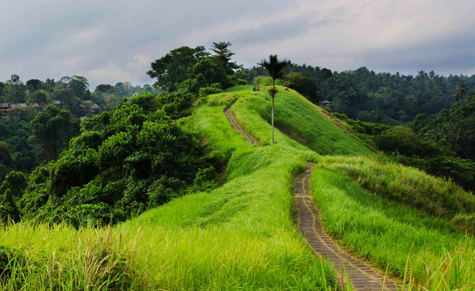 valley Kampuhan