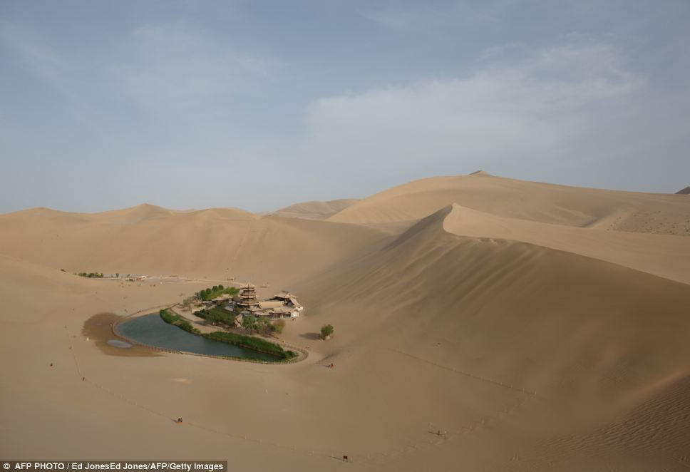 Fascinating ancient oasis in China's desert Gobi (7)