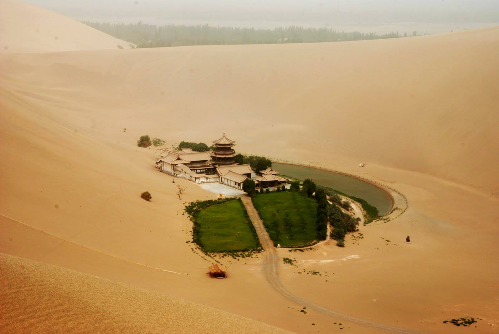 Fascinating ancient oasis in China's desert Gobi (9)