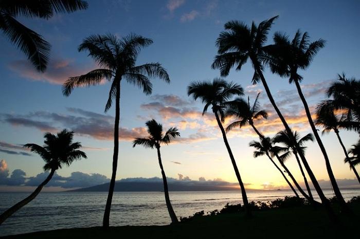 Oahu (3)