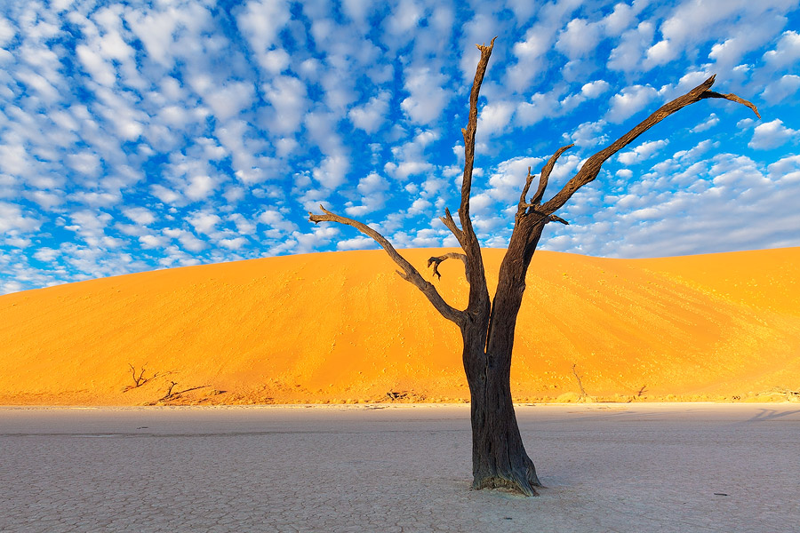 1 Deadvlei, Namibia Amazing places