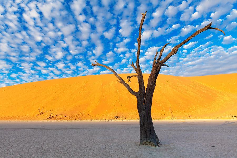 1 Deadvlei, Namibia Amazing places