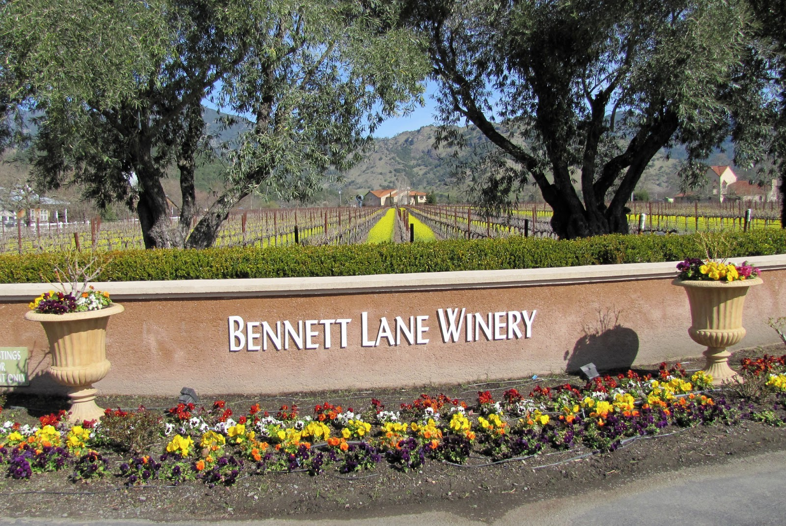 Bennett Lane Winery 1 - Erik Wait