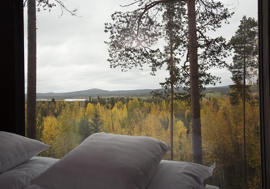 Treehotel, Harads, Sweden (6)