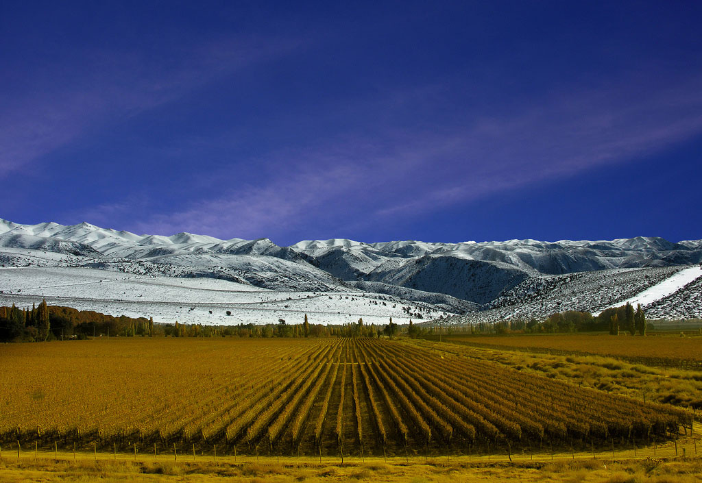 mendoza Best trips for wine lovers
