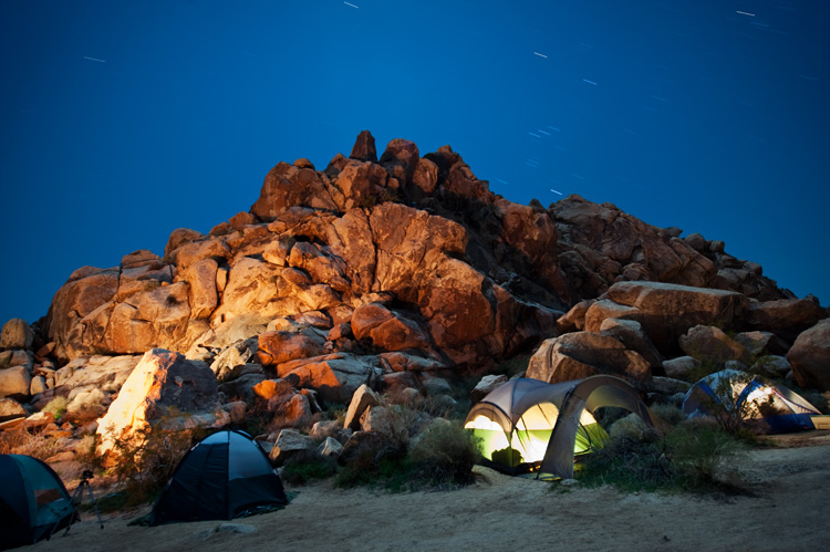 Joshua Tree Perfect places to go camping