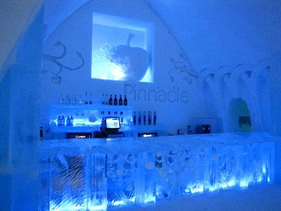 ice-bar-of-hotel-de-glace