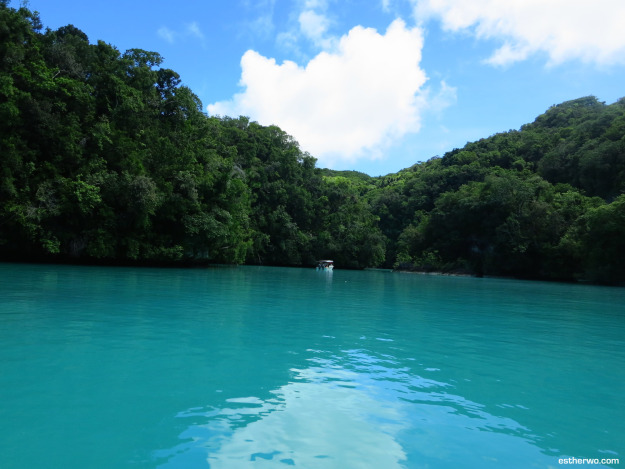 natural mud bath in Palau's Milky Way Once in a lifetime experiences