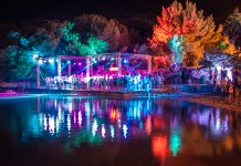 The Garden Festival