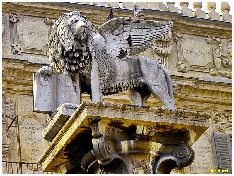 Lion, Verona